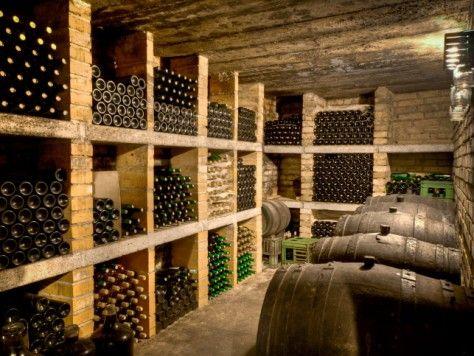 Ruta guiada a los viñedos y bodegas de cava de Sant Sadurní d'Anoia en Barcelona