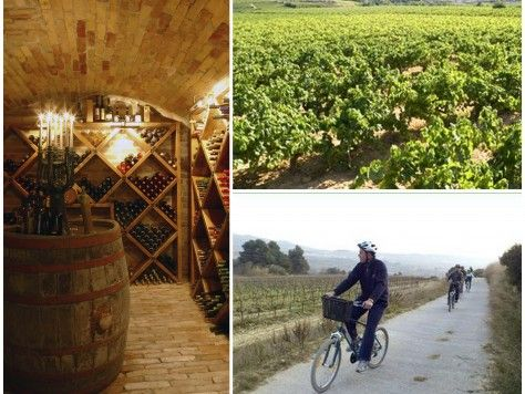 Tour vinícola en bicicleta y cata de vinos, ruta guiada por las viñas y las bodegas del Penedès (Catalunya)