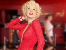 Pack con Marilyn Monroe - Happy Birthday, Mr. President